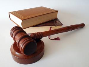 """""""Business Judgement Rule"""". Una medida de responsabilidad del administrador social"""