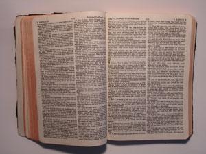 Canon o canonicidad