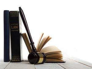 El carácter normativo directo de la Constitución