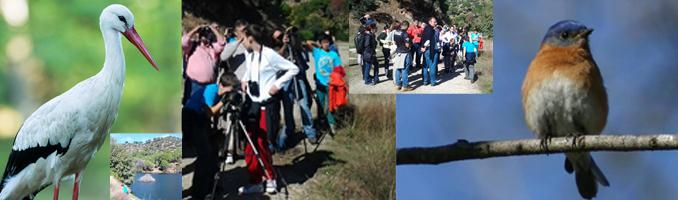 Excursión ornitológica de la ACEF.- UDIMA de Madrid
